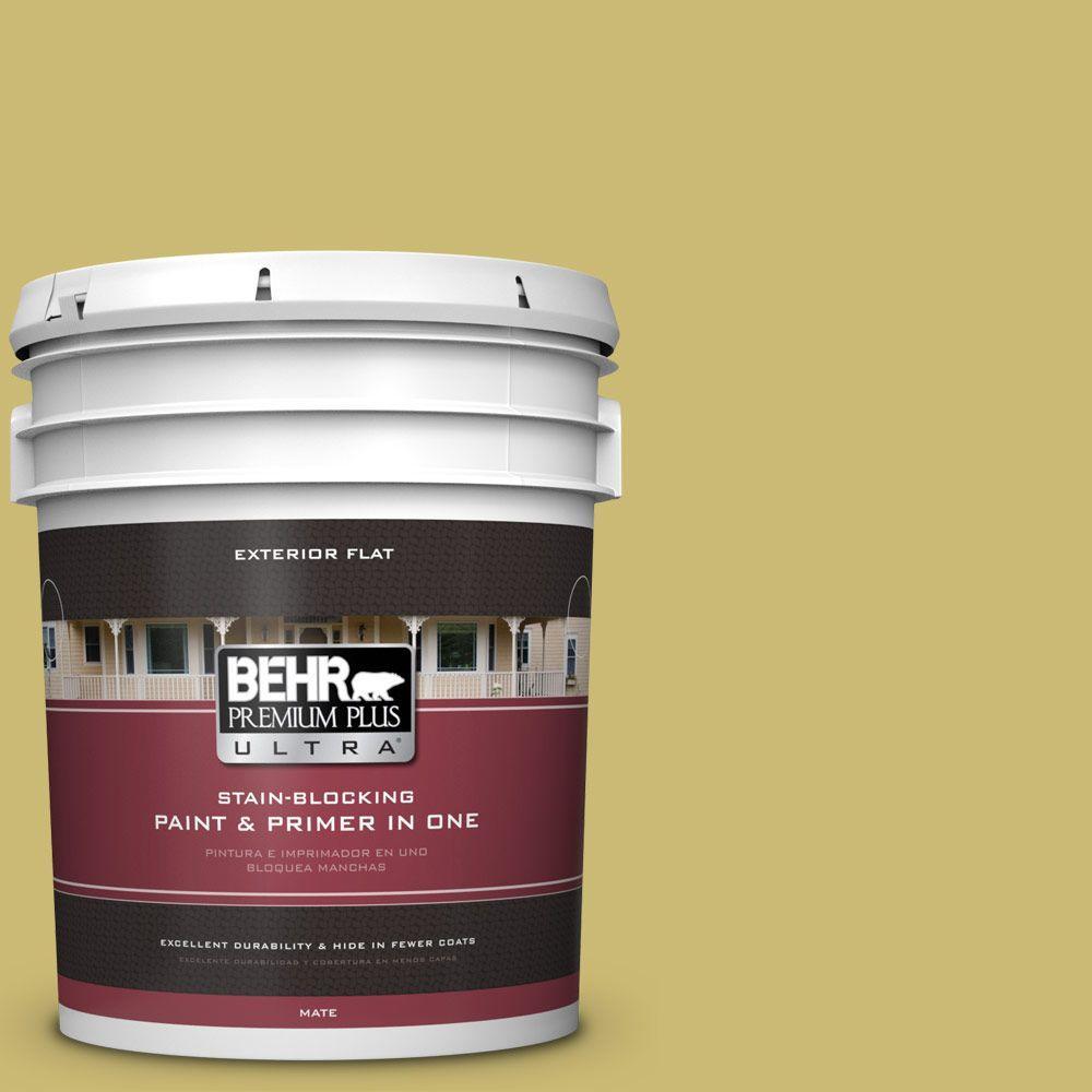 BEHR Premium Plus Ultra 5 gal. #hdc-SP16-02 Pistachio Shortbread Flat Exterior Paint