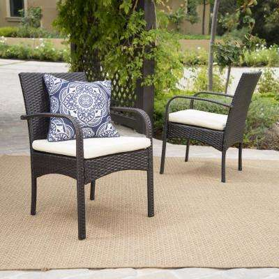 Cordoba Multi-Brown Removable Cushions Wicker Outdoor Dining Chair with Beige Cushions (2-Pack)