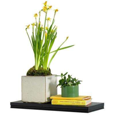 18 in. W x 8 in. D x 1.25 in. H Warwick Black MDF Floating Shelf