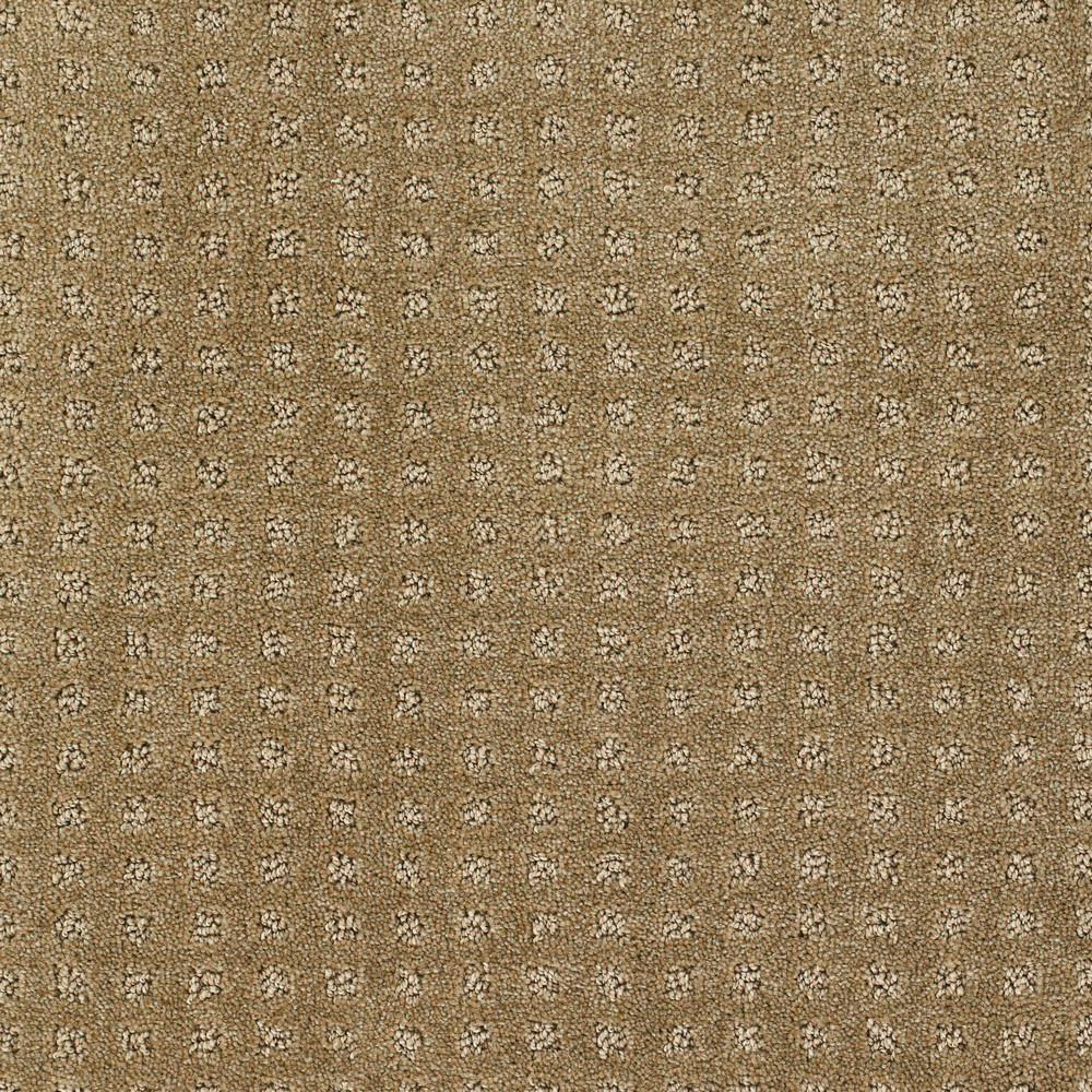 Carpet Sample - Mind Set - Color Captivate Pattern 8 in. x 8 in.