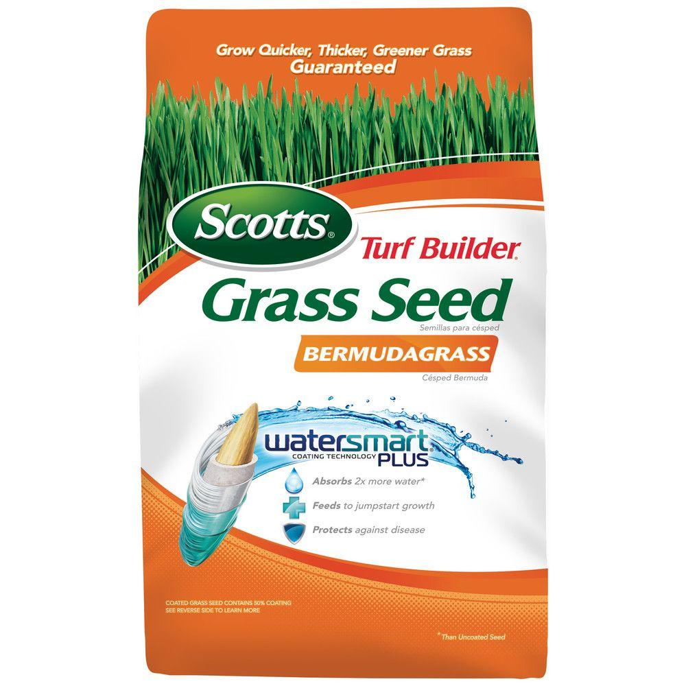 Best way to plant grass seed - Turf Builder Grass Seed