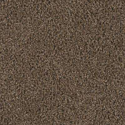 Carpet Sample - Reed Piper - Color Rook Texture 8 in. x 8 in.