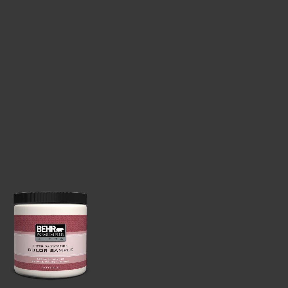8 oz. #PPF-59 Raven Black Interior/Exterior Paint Sample