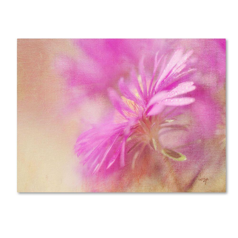 30 in. x 47 in. Dewy Pink Aster Canvas Art