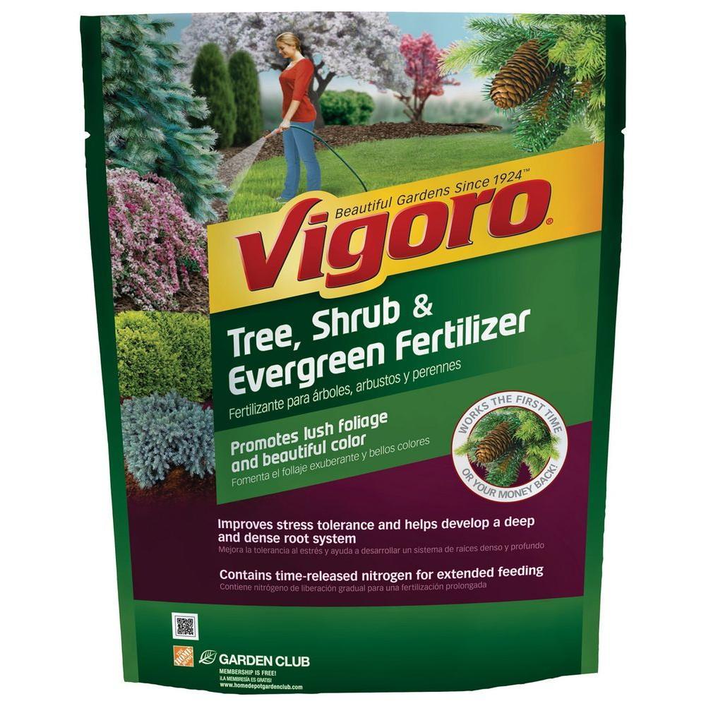 Vigoro 3.5 lb. Tree, Shrub and Evergreen Plant Food