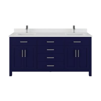 Kali 72 in. W x 22 in. D Bath Vanity in Blue ENGRD Stone Vanity Top in White with White Basin Power Bar and Organizer