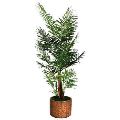 81 in. Tall Areca Palm Tree in 16 in. Fiberstone Planter