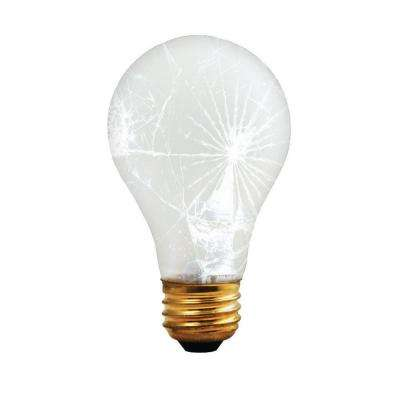100-Watt A19 Frost Tough Coat Dimmable Warm White Light Incandescent Light Bulb (12-Pack)