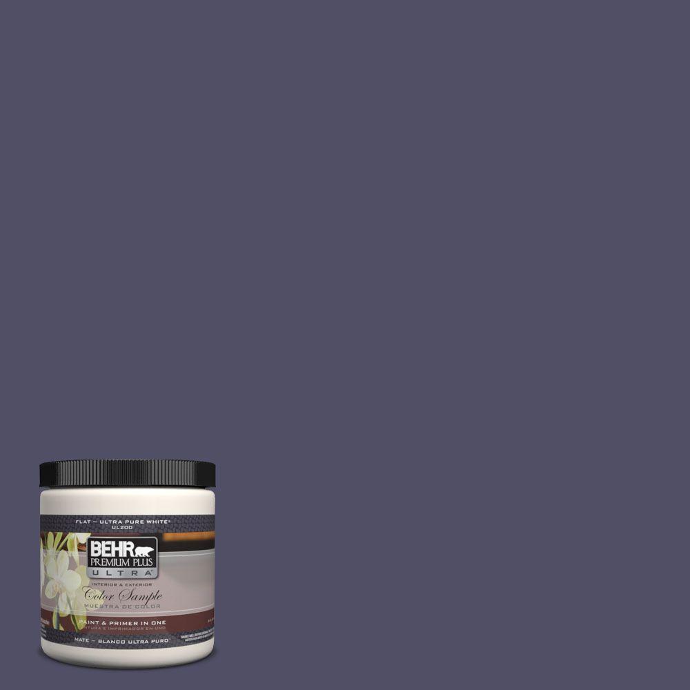 BEHR Premium Plus Ultra 8 oz. #UL250-23 Mardi Gras Interior/Exterior Paint Sample