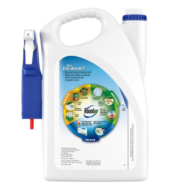 Roundup Ready To Use 1 Gal Plus Weed And Grass Killer 500261005 The Home Depot