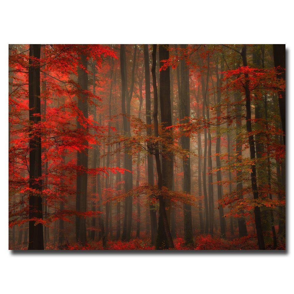 Trademark Fine Art 16 in. x 24 in. Enchanting Red Canvas Art-DISCONTINUED