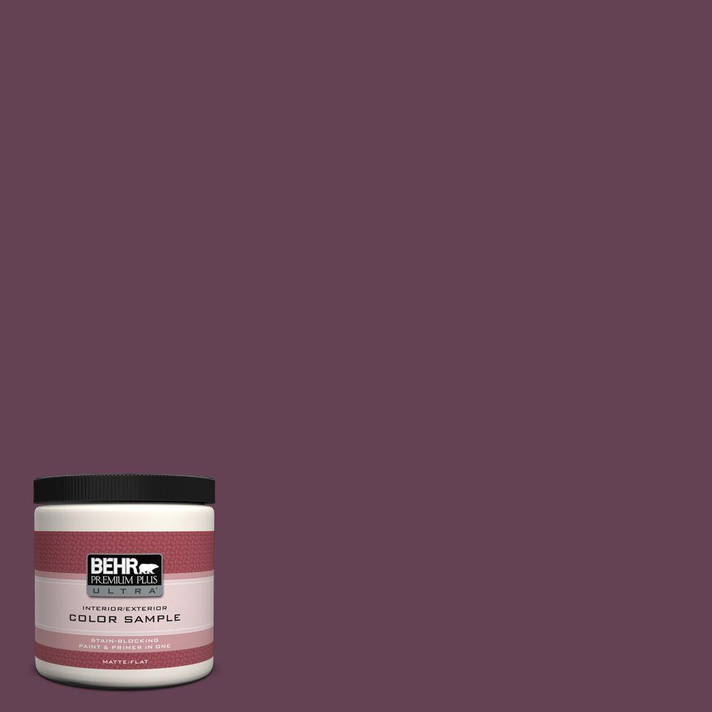 Icc 111 Plum Harvest Matte Interior Exterior Paint And Primer In One Sample