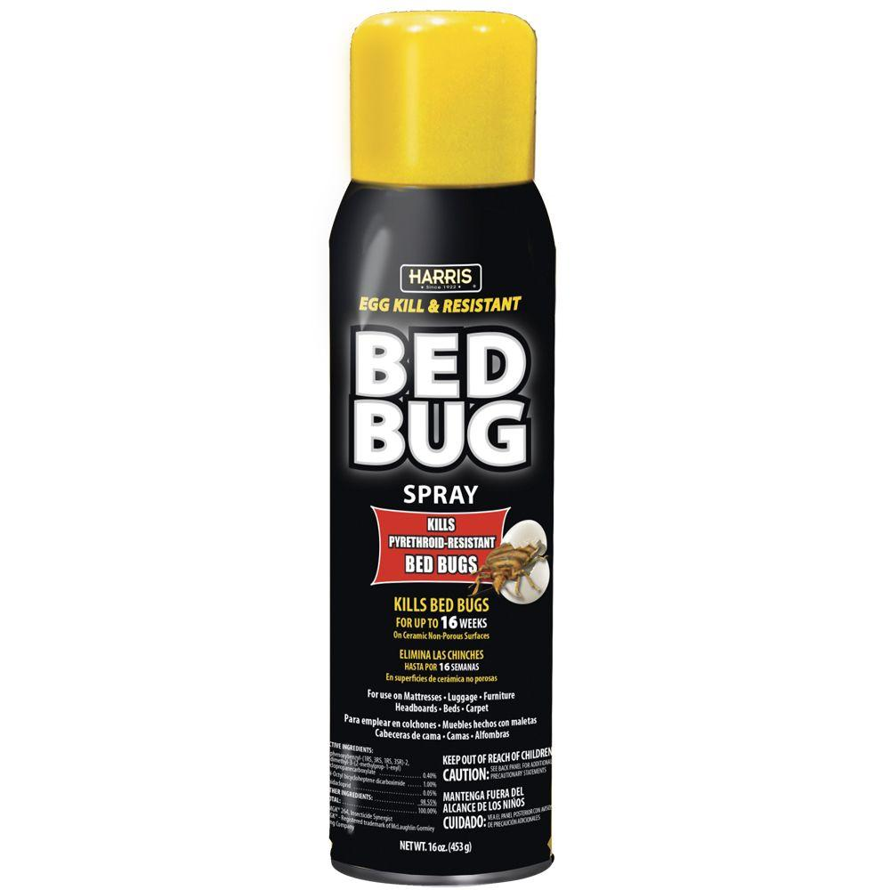 Bed Bug Spray Home Depot >> Harris Egg Kill and Resistant Bed Bug Spray-BLKBB-16A ...