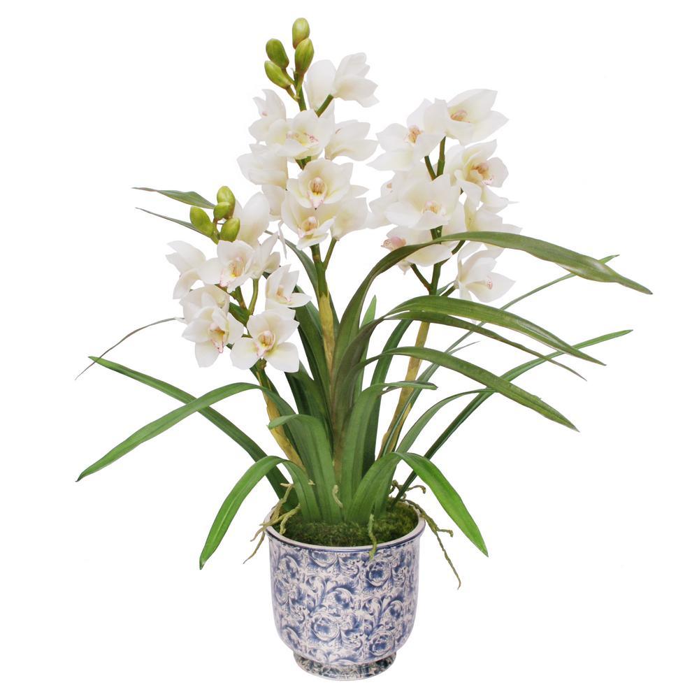 32 in. Cymbidium Orchid in Cache Pot
