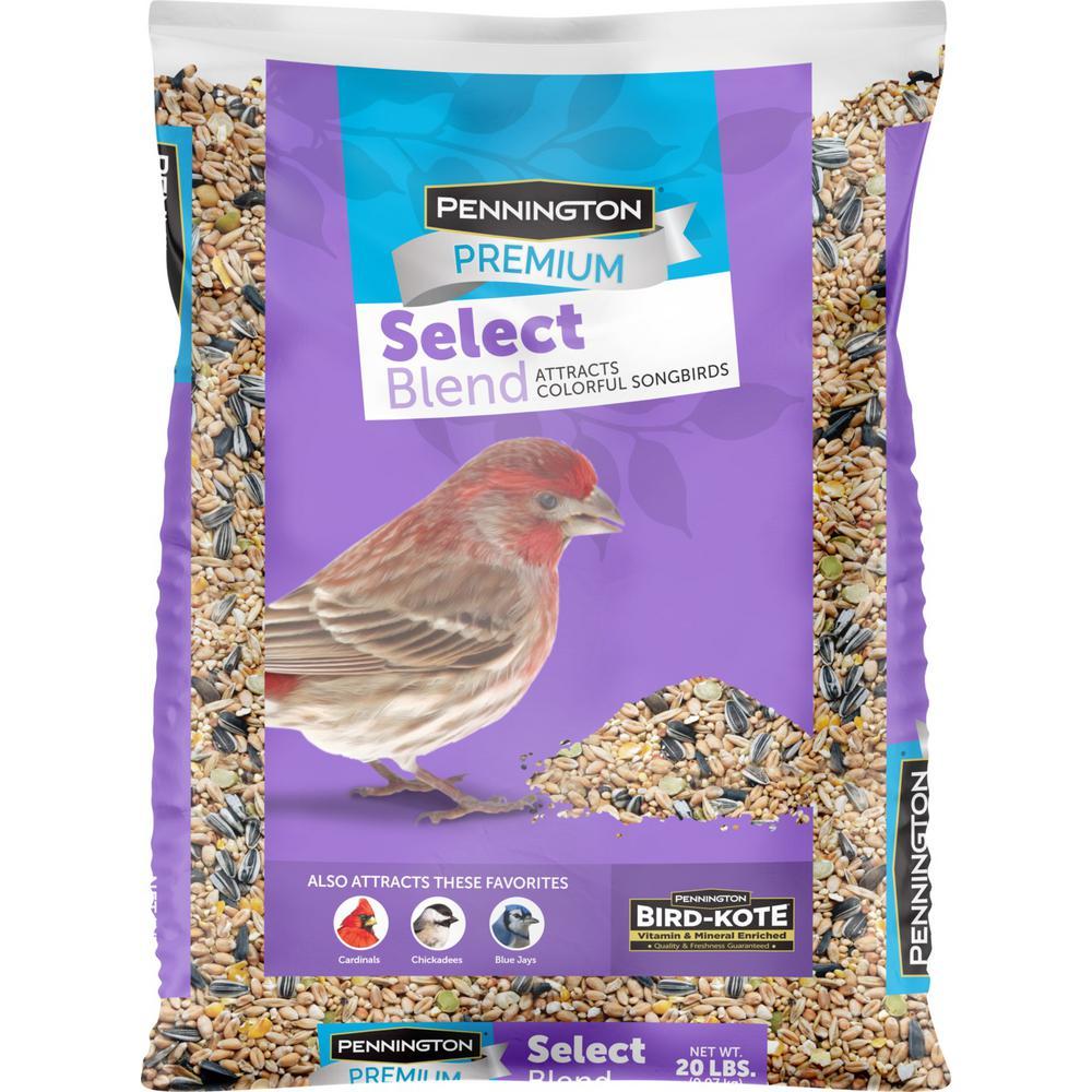 Premium Select 20 lbs. Wild Bird Seed Bird Food