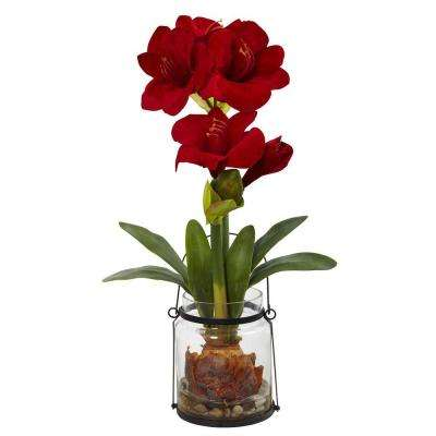 24 in. Amaryllis with Vase