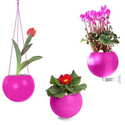7 in. x 6 in. x 7 in. Pink Plastic, Table, Wall and Ceiling Planter (3-Pack)