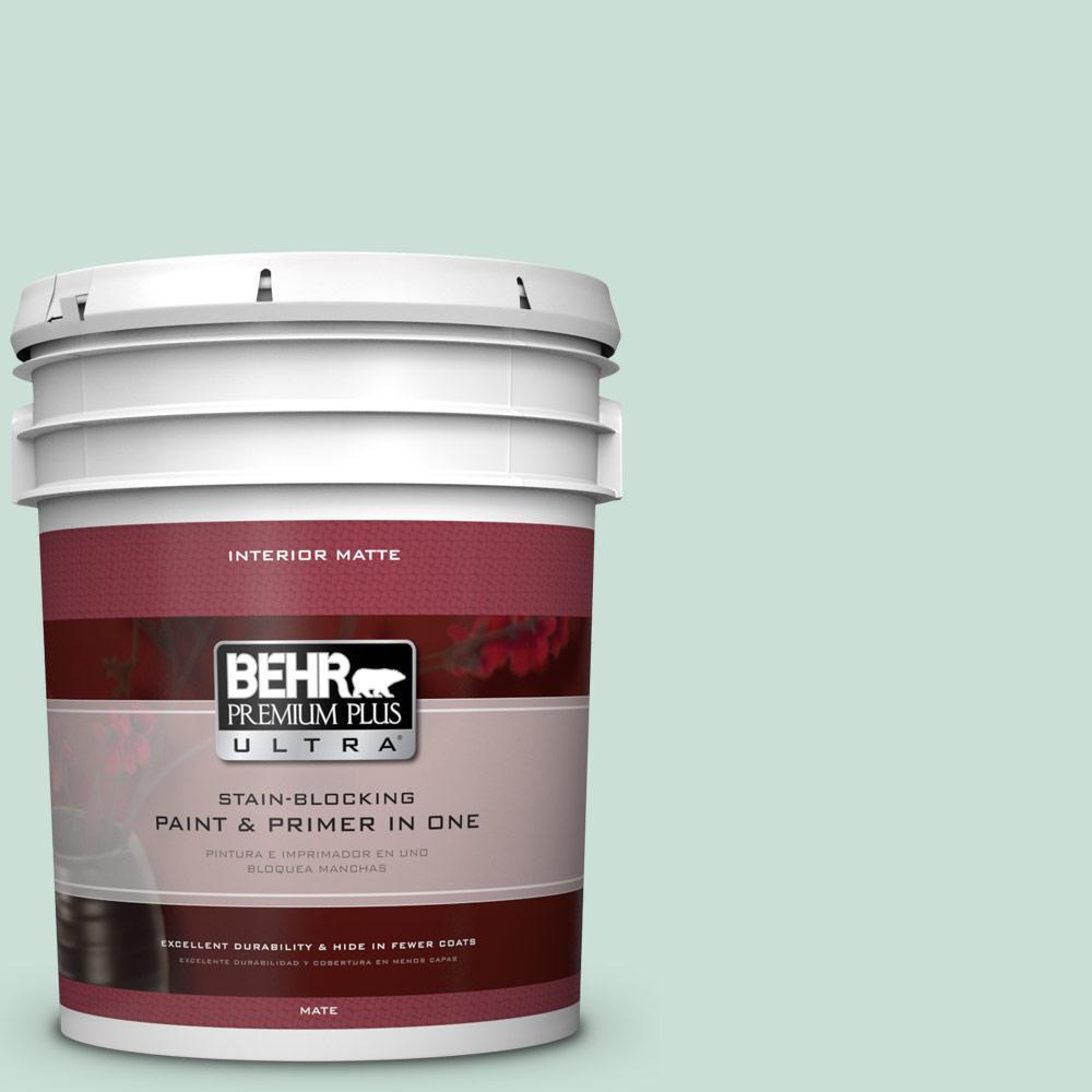 5 gal. #M430-2 Ice Rink Matte Interior Paint