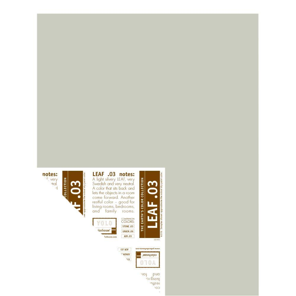 YOLO Colorhouse 12 in. x 16 in. Leaf .03 Pre-Painted Big Chip Sample