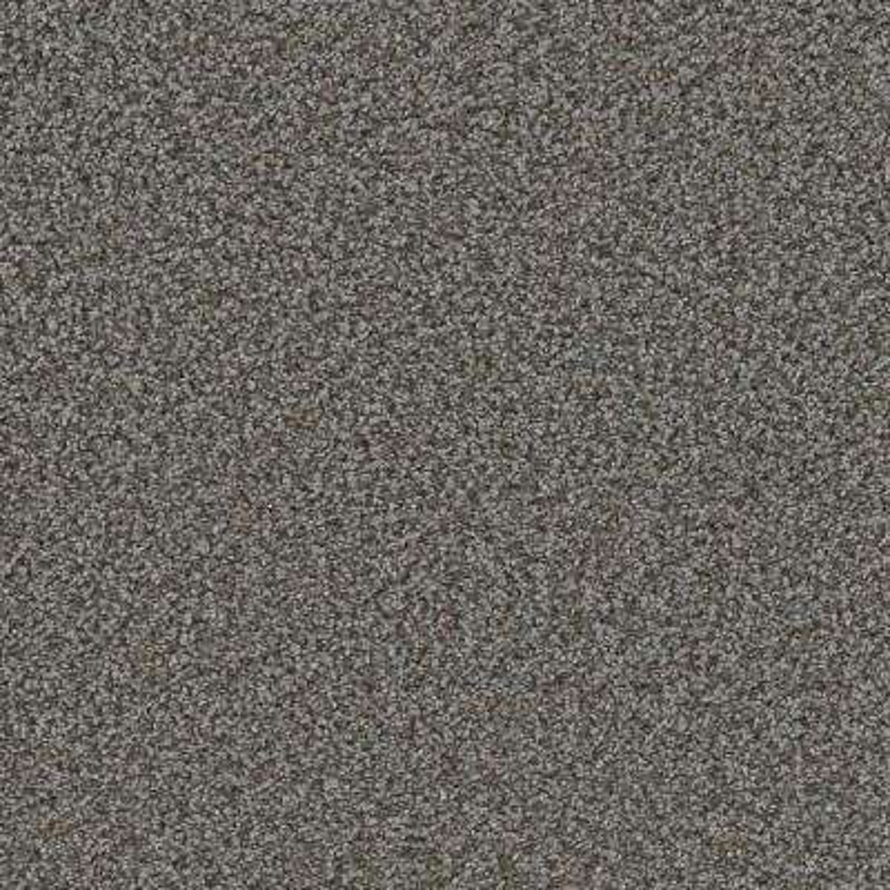 Carpet Sample - Jack Bay II - Color Creative Texture 8 in. x 8 in.