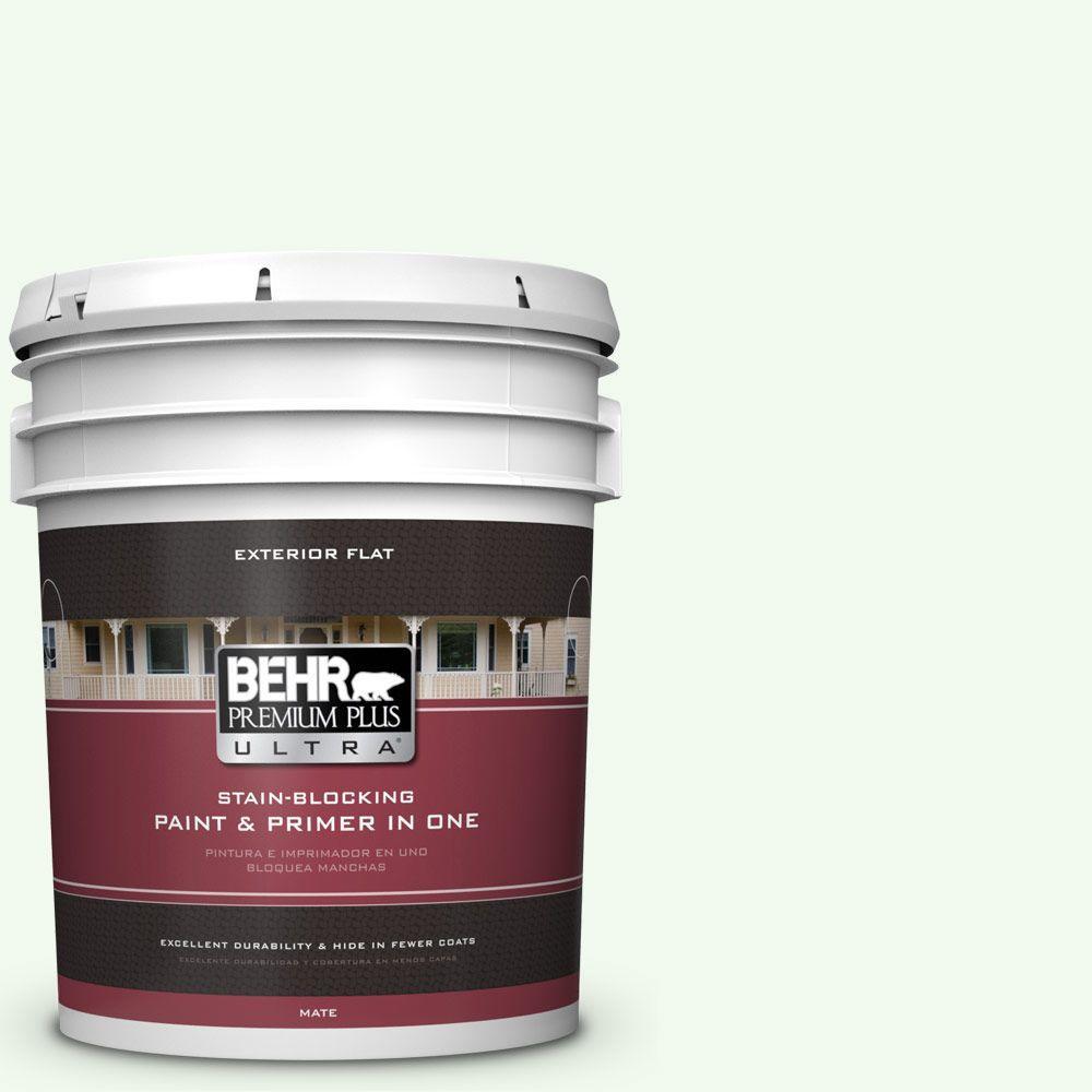 BEHR Premium Plus Ultra 5-gal. #GR-W5 Unwind Flat Exterior Paint