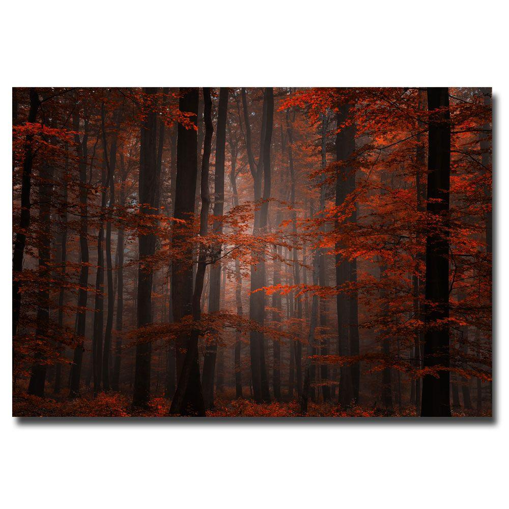 Trademark Fine Art 22 in. x 32 in. Spiritual Wood Canvas Art-DISCONTINUED