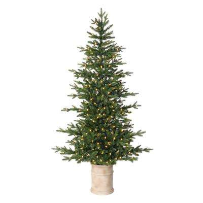 6.5 ft. Fir LED Pre-Lit Potted Artificial Christmas Tree with 300 Warm White Lights