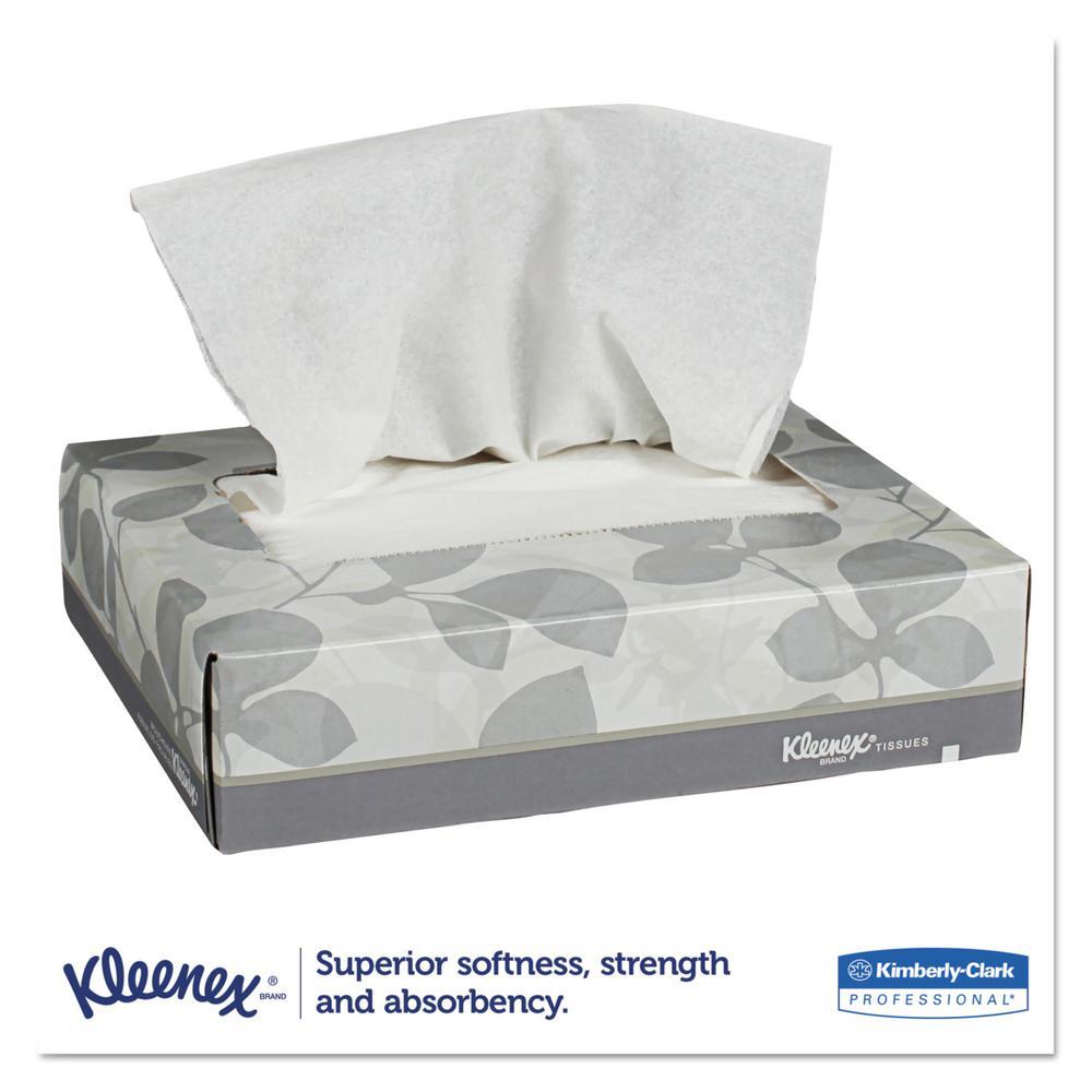 Junior Facial Tissue 2-Ply (40 Tissues/Box, 80 Boxes/Carton)