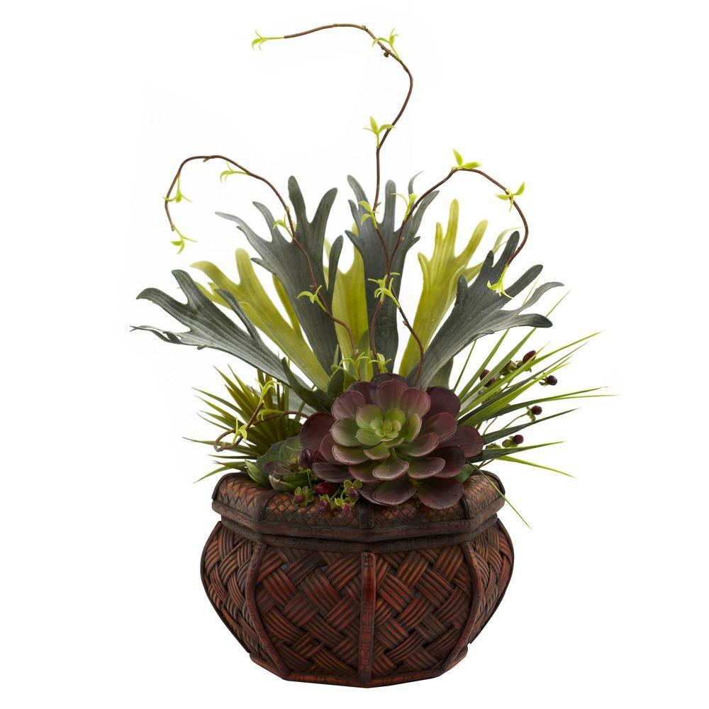 Succulent Garden with Decorative Planter