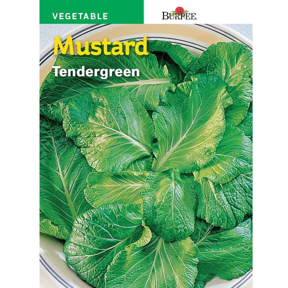 Mustard Tender-Green Seed
