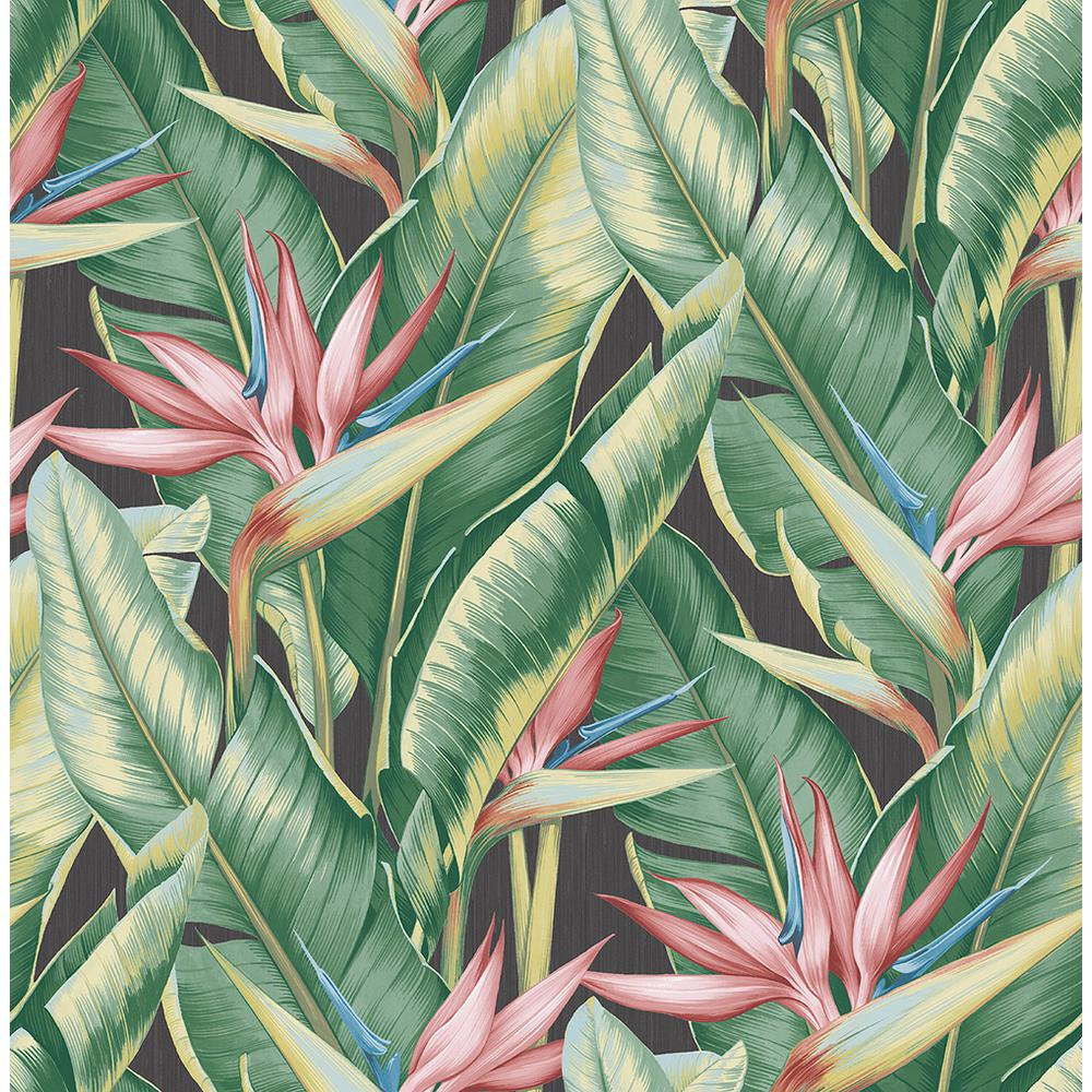 Kenneth James Arcadia Pink Banana Leaf Wallpaper Sample