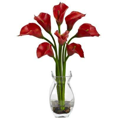 Indoor Classic Calla Lily Arrangement