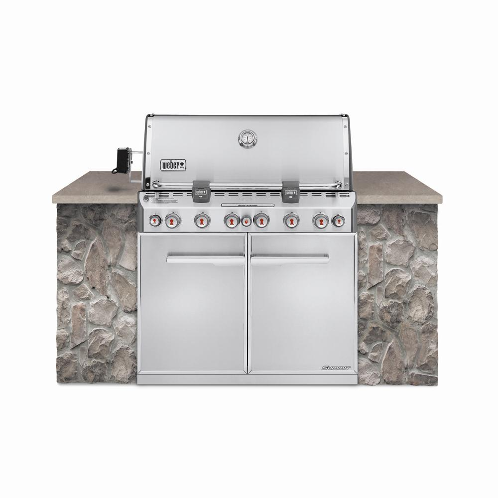 Weber Summit S-660 6-Burner Built-In Natural Gas Grill in ...