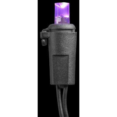 20-Light LED Purple Concave Battery Operated Light Set