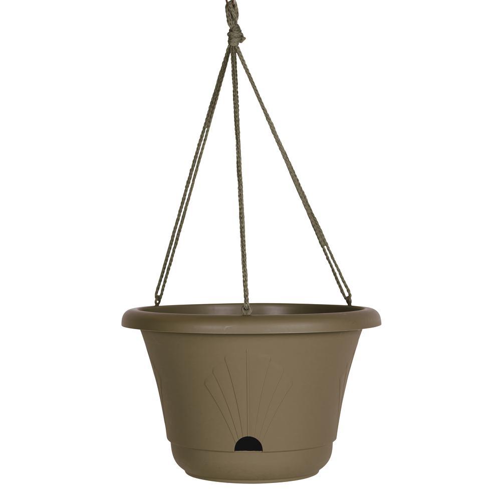 Lucca 13 in. Peppercorn Plastic Self Watering Hanging Basket