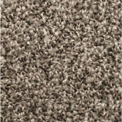 Lake View Dovetail - Texture 12 ft. Carpet