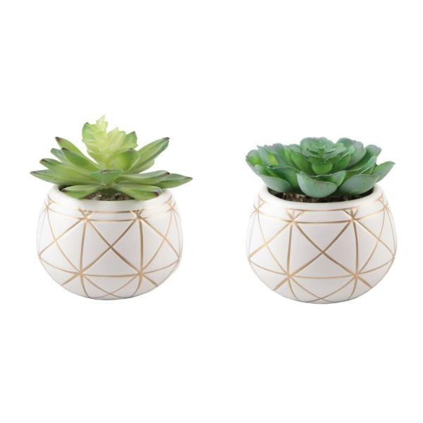 Set of 2 Succulent in 4 in. GEO Gold Round Ceramic Planter