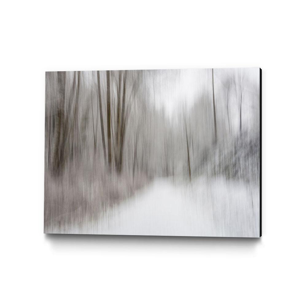"""28 in. x 22 in. """"Foggy Lichen II"""" by Norm Stelfox Wall Art"""