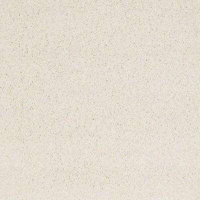 Carpet Sample - Tremendous I - Color Antarctica Texture 8 in. x 8 in.