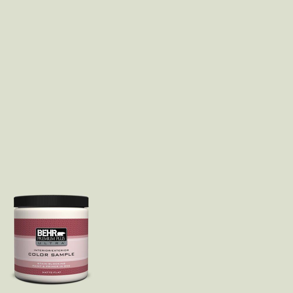 BEHR Premium Plus Ultra 8 oz. #PPU10-15 Desert Springs Interior/Exterior Paint Sample