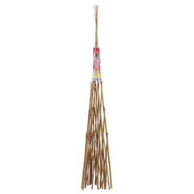 60 in. Bamboo Teepee Trellis (6-Pieces per Pack)