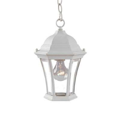 Brynmawr Collection 1 Light Outdoor Textured White Hanging