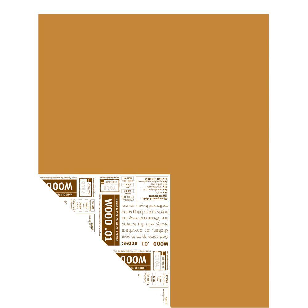 YOLO Colorhouse 12 in. x 16 in. Wood .01 Pre-Painted Big Chip Sample