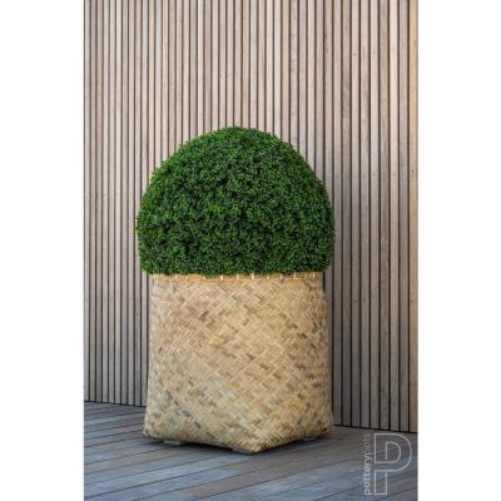 Boxwood Large Plastic Indoor Outdoor Modern Round Planter, 35.4 in. Diameter, Green