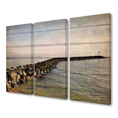 "16 in. x 24 in. ""Rock Path Ocean Planked Look Photography"" by Kimberly Allen Canvas Wall Art (3-Piece)"