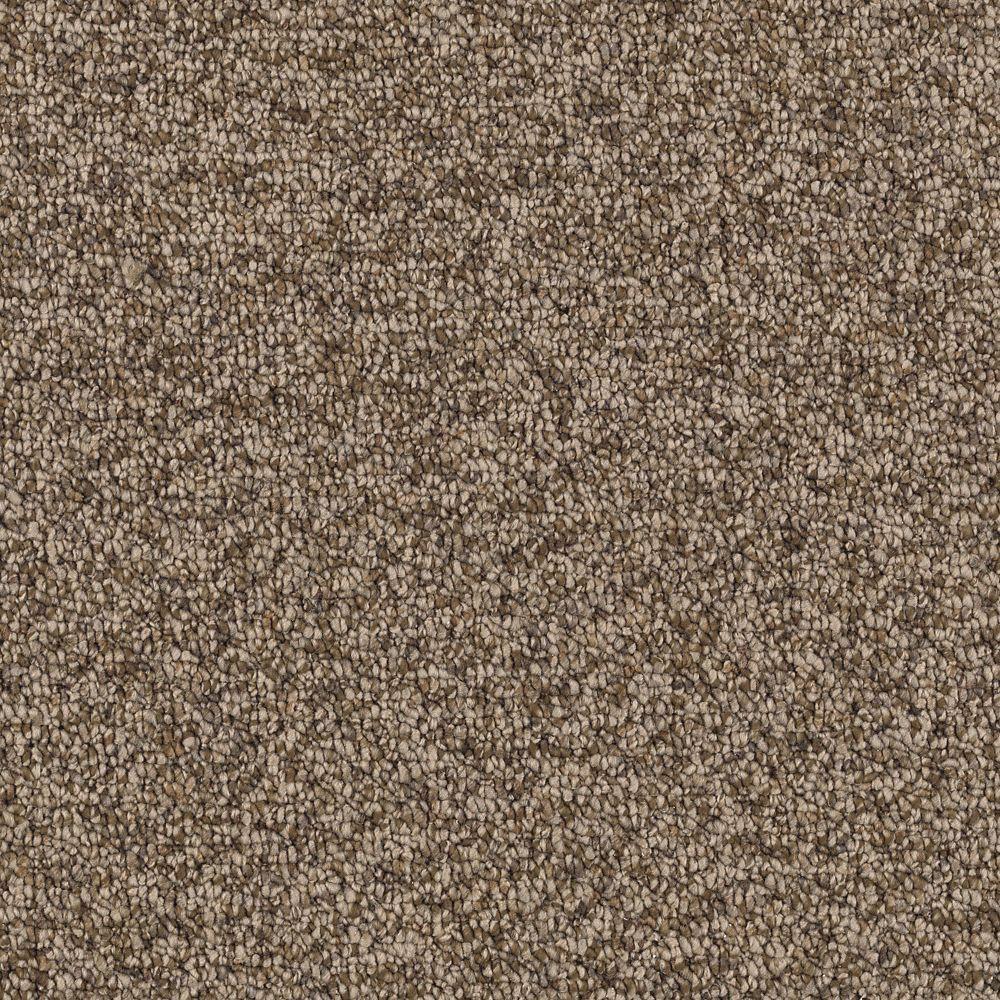 Slug Trail On Living Room Carpet: Color Dried Peat Berber Loop
