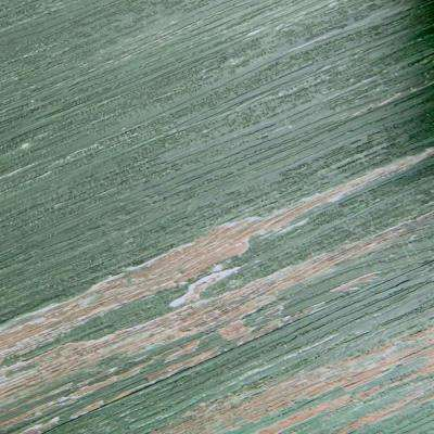Colors Floor and Wall Old Green Tree Aged 6 in. x 36 in. Painted Style Luxury Vinyl Plank (3600 sq. ft./pallet)