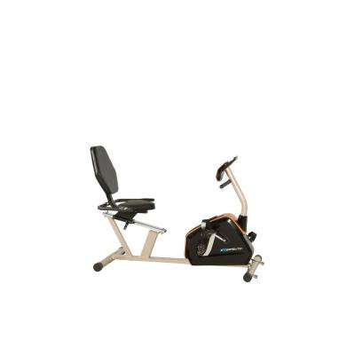 GOLD 975 Recumbent Exercise Bike with 21 Workout Programs