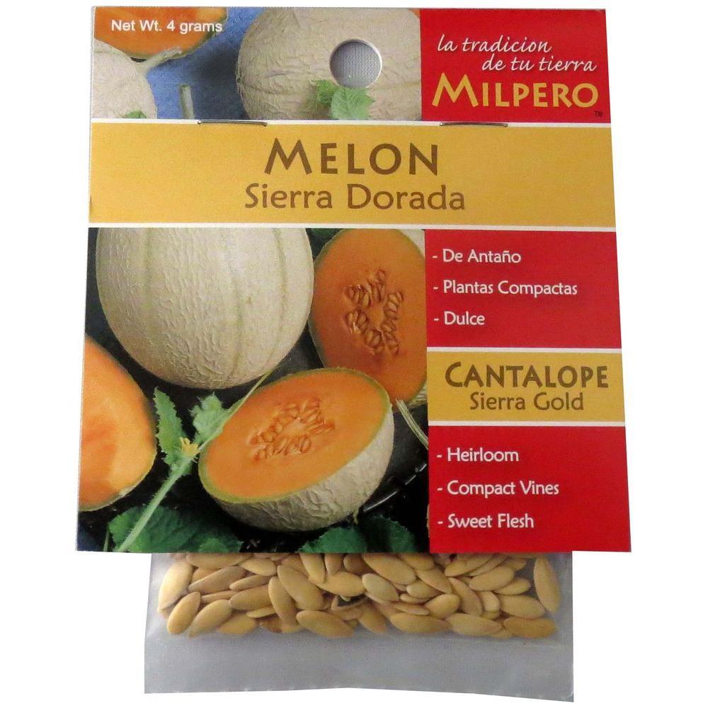 MILPERO Sierra Gold Melon Seed