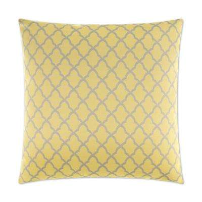 Pacato Feather Down 24 in. x 24 in. Standard Decorative Throw Pillow